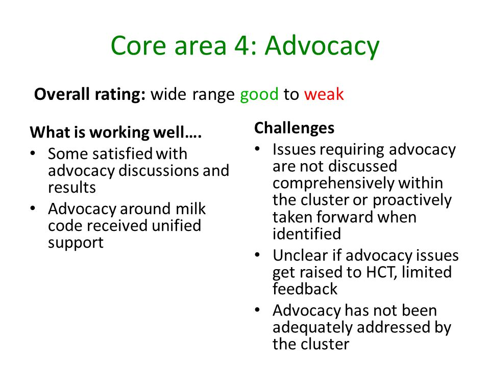 Core area 4: Advocacy What is working well…. Some satisfied with advocacy discussions and results Advocacy around milk code received unified support C