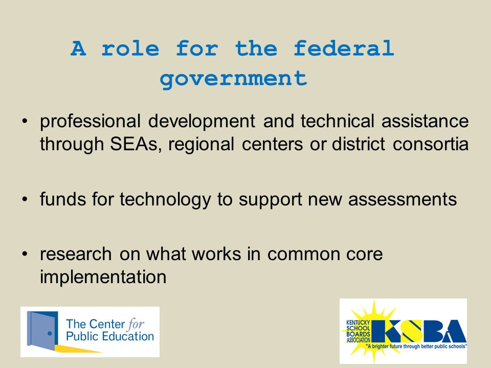 professional development and technical assistance through SEAs, regional centers or district consortia funds for technology to support new assessments research on what works in common core implementation A role for the federal government