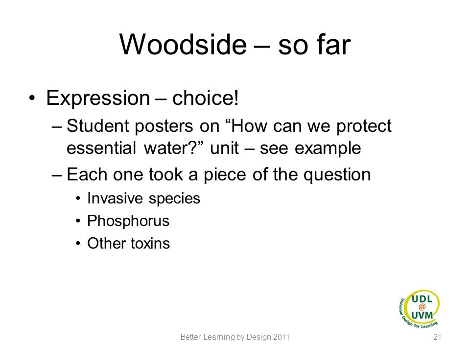 """Woodside – so far Expression – choice! –Student posters on """"How can we protect essential water?"""" unit – see example –Each one took a piece of the ques"""