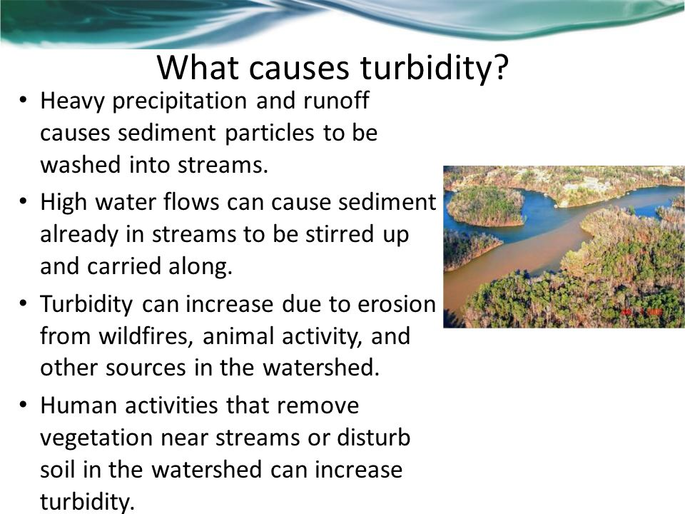 What causes turbidity.