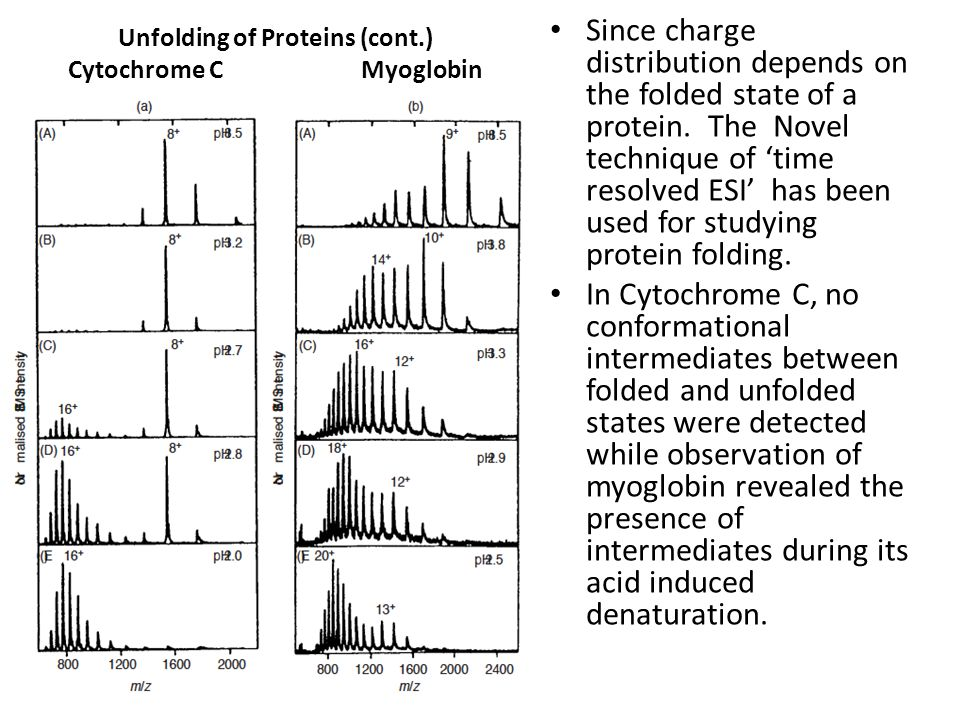 Unfolding of Proteins (cont.) Cytochrome C Myoglobin Since charge distribution depends on the folded state of a protein. The Novel technique of 'time