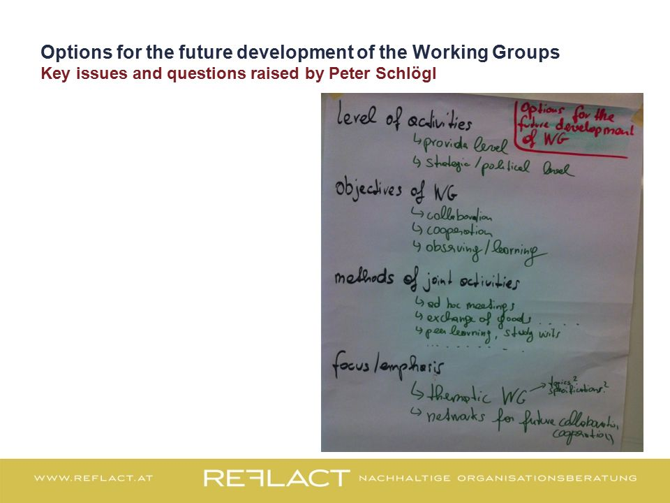Options for the future development of the Working Groups Key issues and questions raised by Peter Schlögl