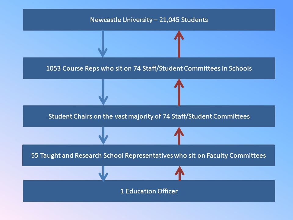 Newcastle University – 21,045 Students 1 Education Officer 1053 Course Reps who sit on 74 Staff/Student Committees in Schools Student Chairs on the vast majority of 74 Staff/Student Committees 55 Taught and Research School Representatives who sit on Faculty Committees