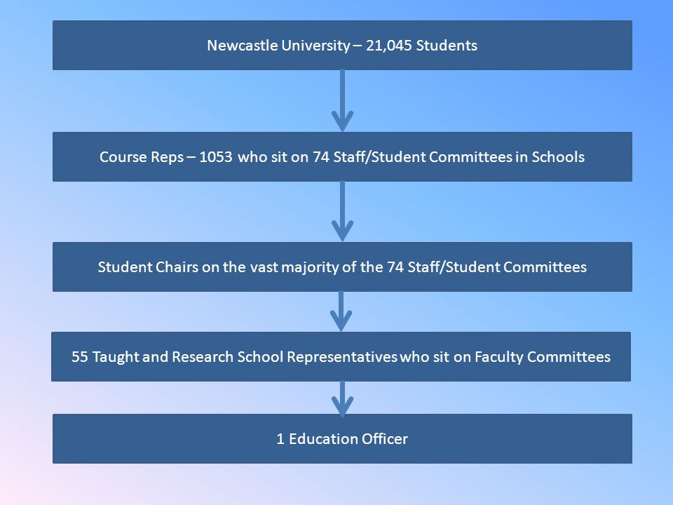 Newcastle University – 21,045 Students 1 Education Officer Course Reps – 1053 who sit on 74 Staff/Student Committees in Schools Student Chairs on the vast majority of the 74 Staff/Student Committees 55 Taught and Research School Representatives who sit on Faculty Committees