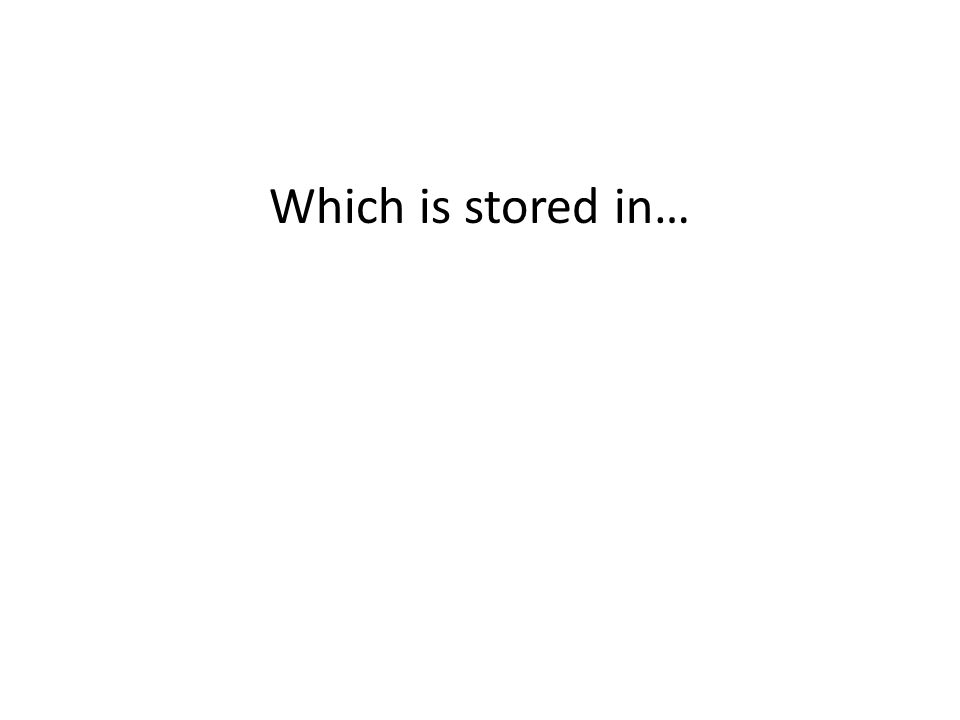 Which is stored in…