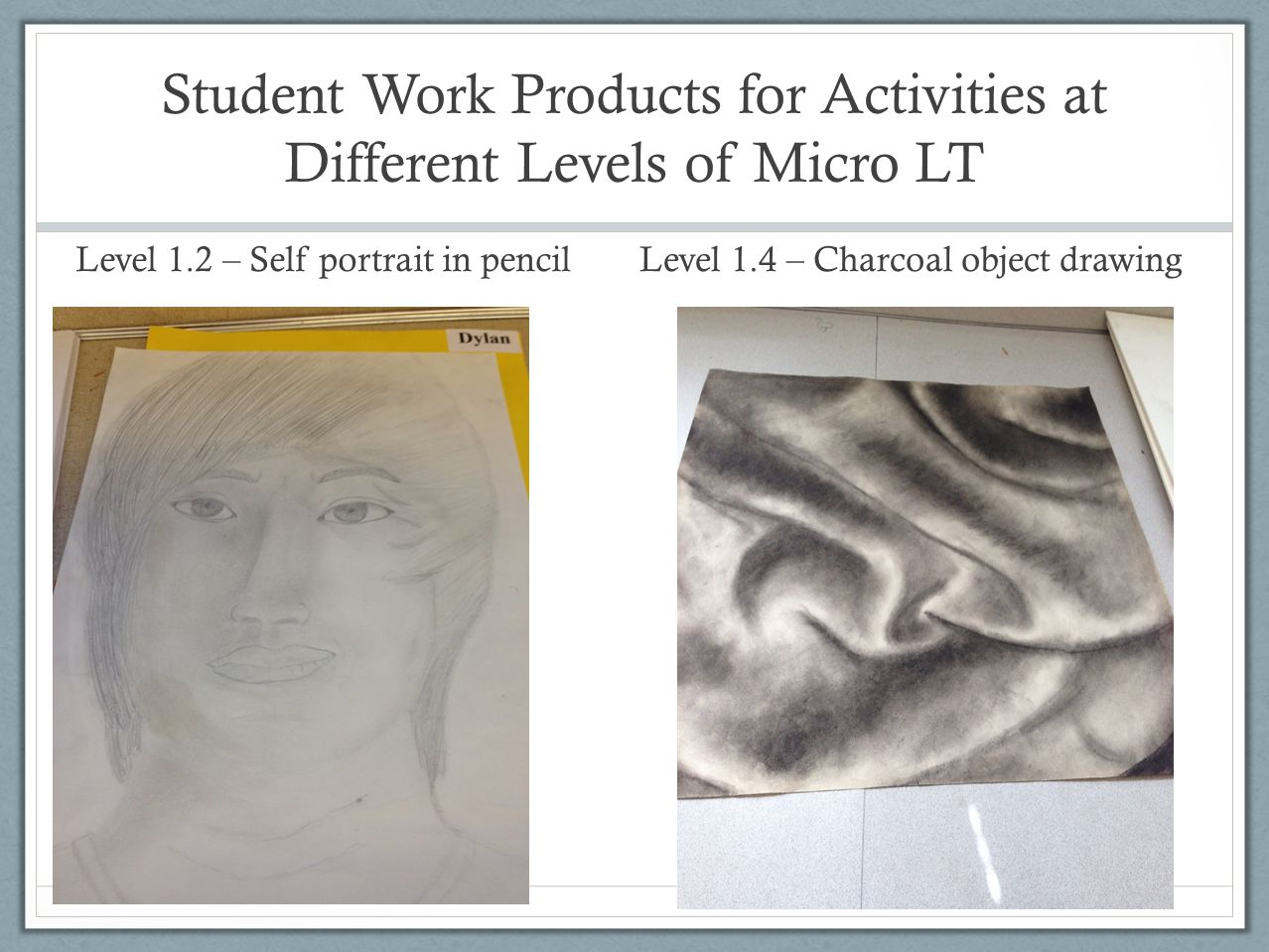 Student Work Products for Activities at Different Levels of Micro LT Level 1.2 – Self portrait in pencil Level 1.4 – Charcoal object drawing