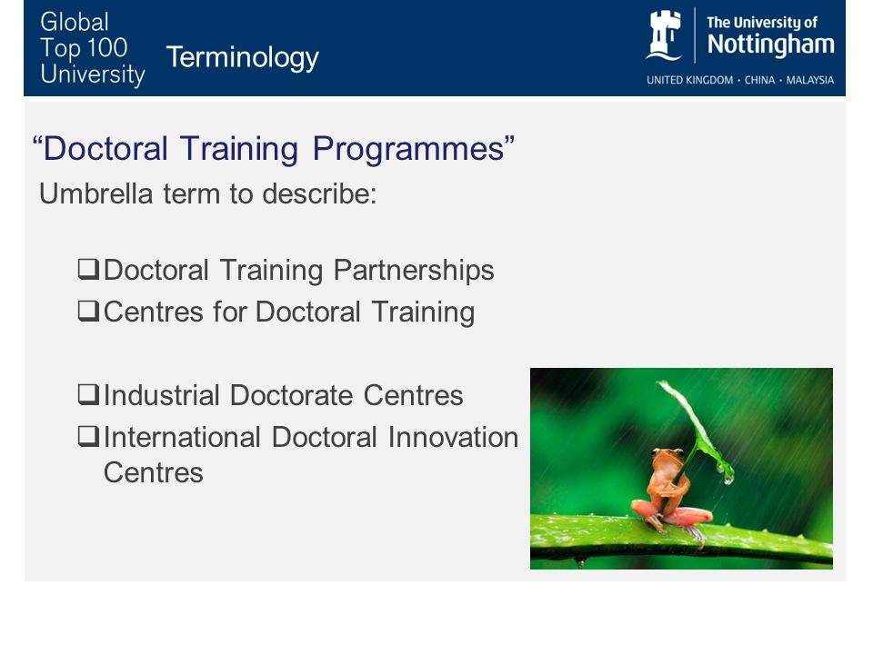 Doctoral Training Programmes Umbrella term to describe:  Doctoral Training Partnerships  Centres for Doctoral Training  Industrial Doctorate Centres  International Doctoral Innovation Centres Terminology