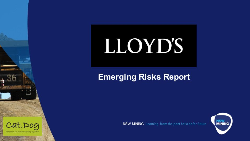 Emerging Risks Report