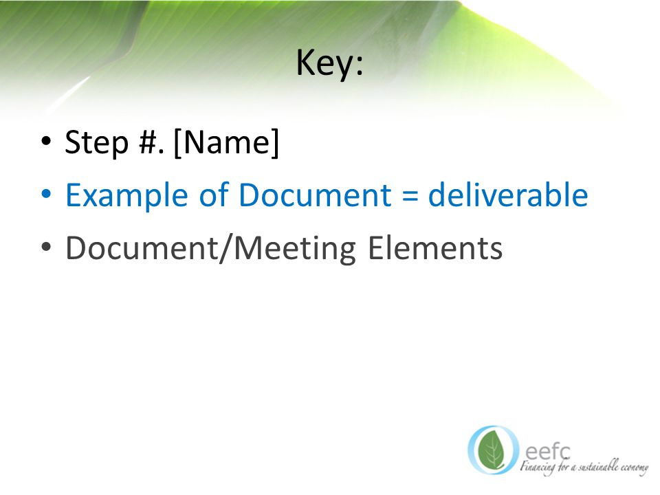 Key: Step #.[Name] Example of Document = deliverable Document/Meeting Elements