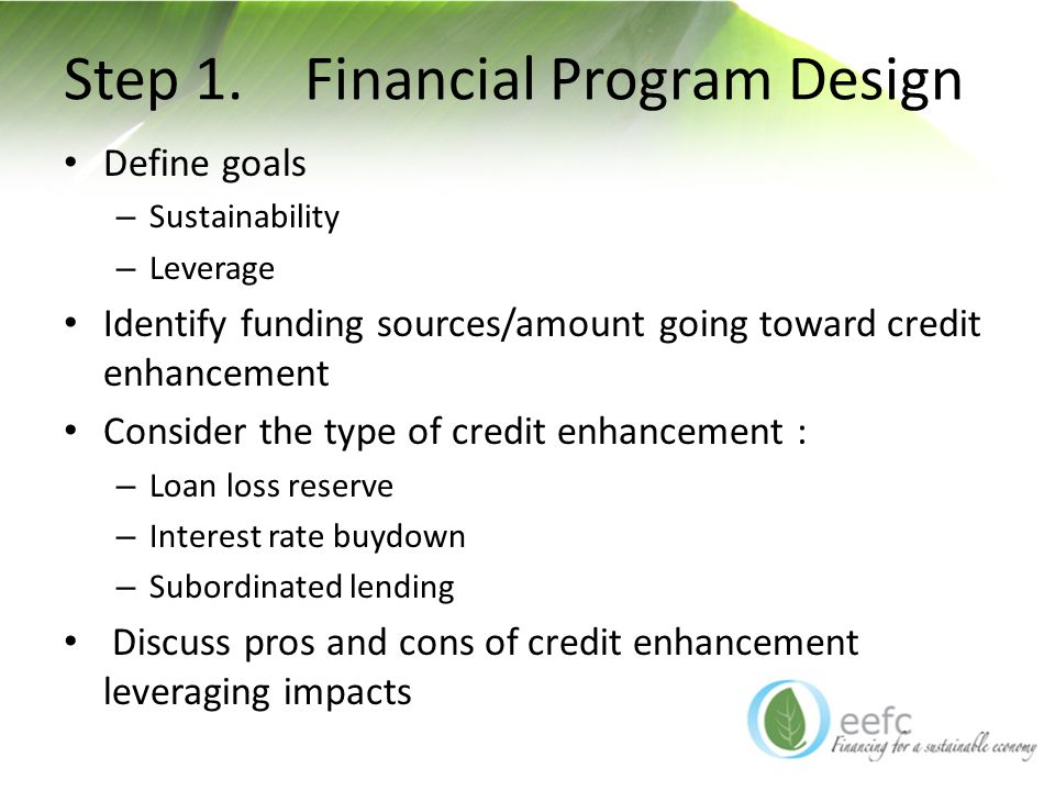 Step 1. Financial Program Design Define goals – Sustainability – Leverage Identify funding sources/amount going toward credit enhancement Consider the