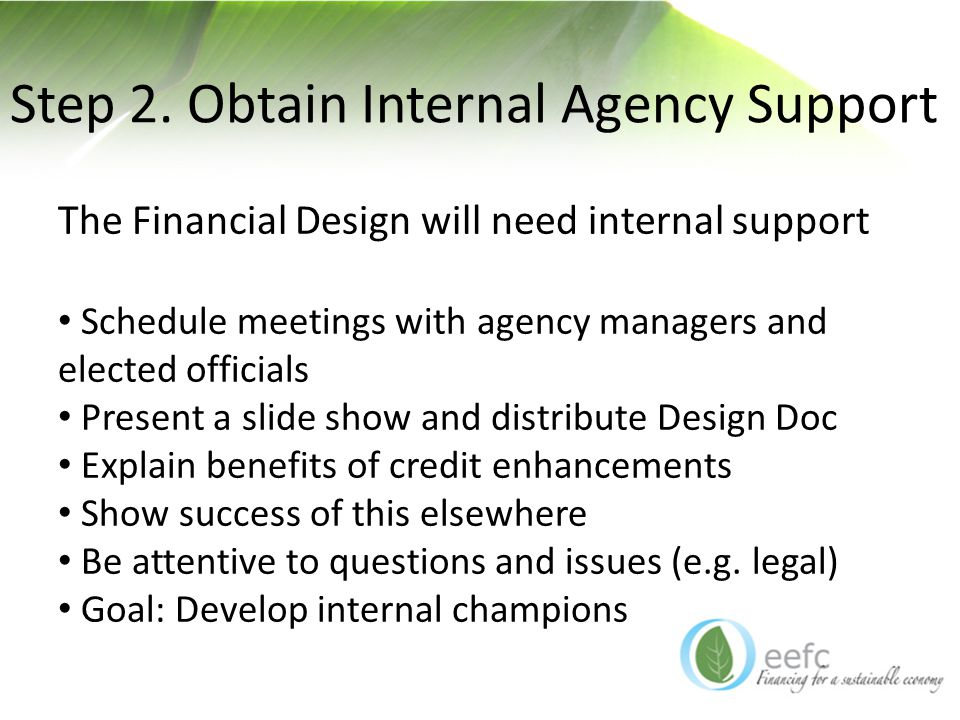 Step 2. Obtain Internal Agency Support The Financial Design will need internal support Schedule meetings with agency managers and elected officials Pr