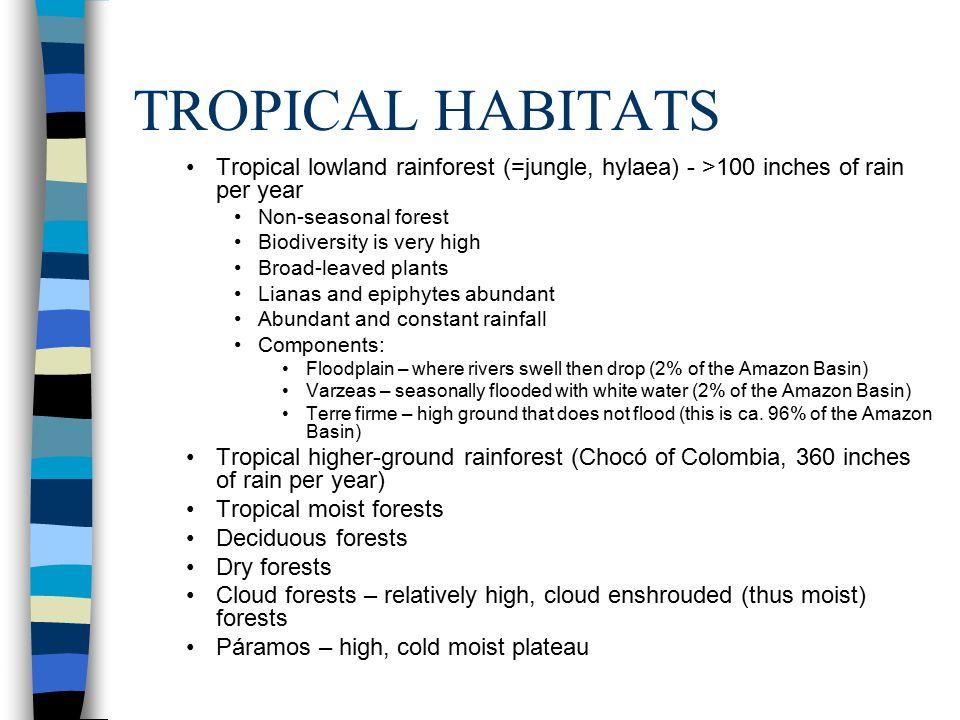 TROPICAL HABITATS (CONT.) Puna – high, cold, arid plateau Grasslands (Savannas, steppes) Rivers and gallery (riparian) forests Deserts (Atacama Desert of N.