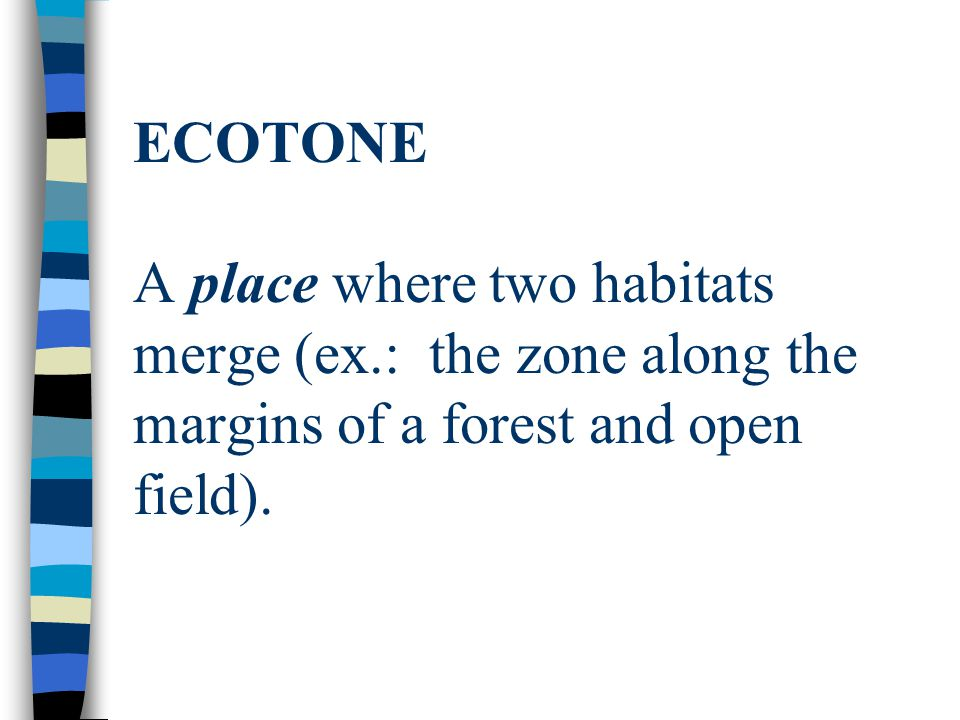 ECOTONE A place where two habitats merge (ex.: the zone along the margins of a forest and open field).