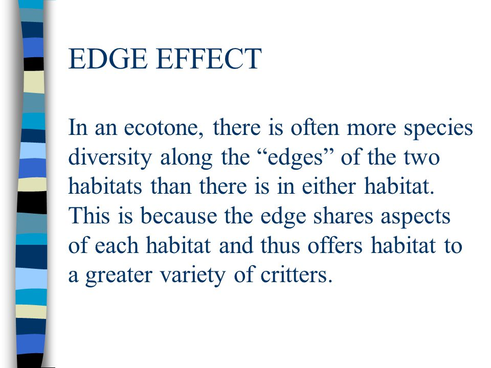 EDGE EFFECT In an ecotone, there is often more species diversity along the edges of the two habitats than there is in either habitat.