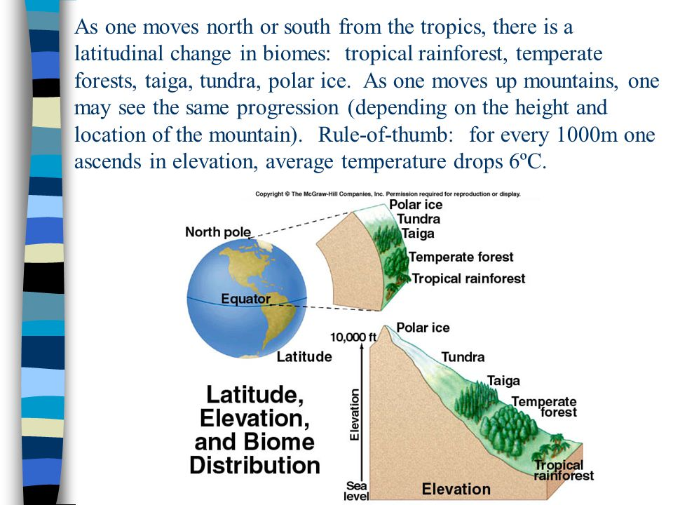 As one moves north or south from the tropics, there is a latitudinal change in biomes: tropical rainforest, temperate forests, taiga, tundra, polar ice.