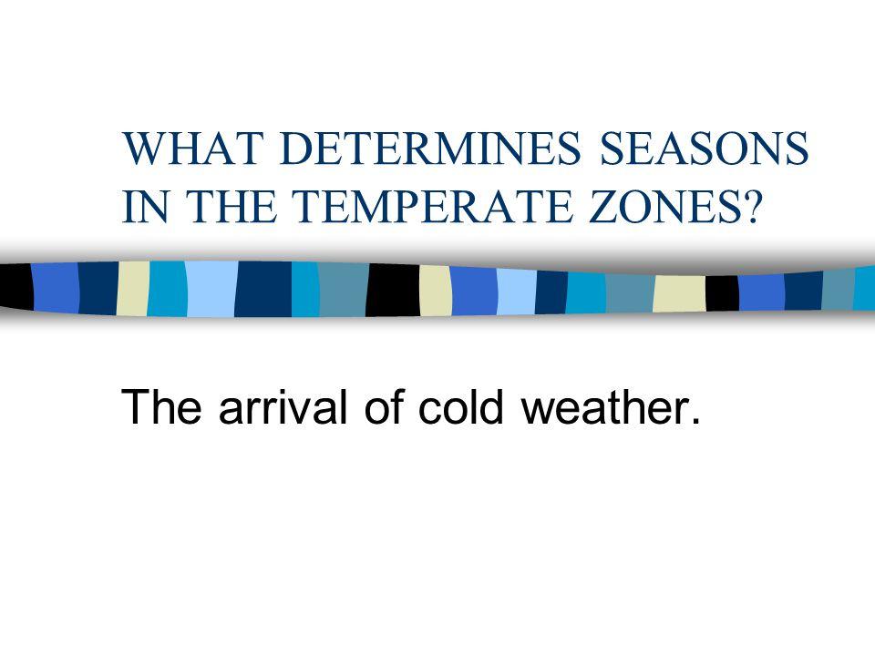 WHAT DETERMINES SEASONS IN THE TROPICS? Rainfall: wet season vs. dry season.