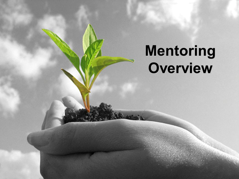 Outcomes Help you understand what mentoring is all about by: Building Relationships Building Capacity Being Reflective