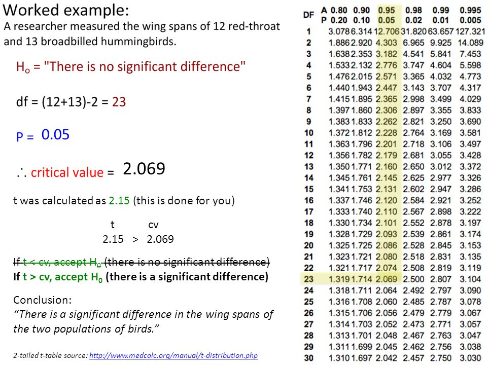 2.069 0.05 t was calculated as 2.15 (this is done for you) t cv 2.15 > 2.069 If t < cv, accept H 0 (there is no significant difference) If t > cv, accept H 0 (there is a significant difference) Conclusion: There is a significant difference in the wing spans of the two populations of birds. 2-tailed t-table source: http://www.medcalc.org/manual/t-distribution.phphttp://www.medcalc.org/manual/t-distribution.php