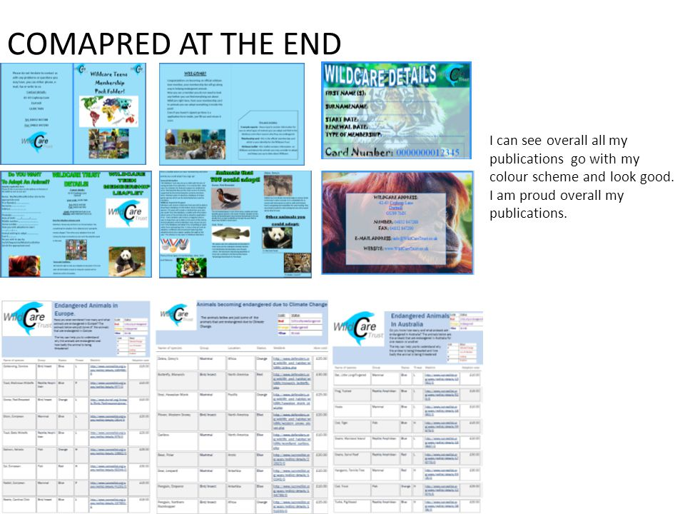 COMAPRED AT THE END I can see overall all my publications go with my colour scheme and look good.