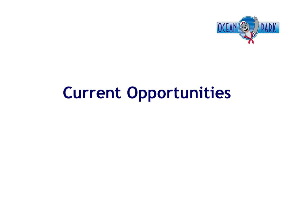 Current Opportunities