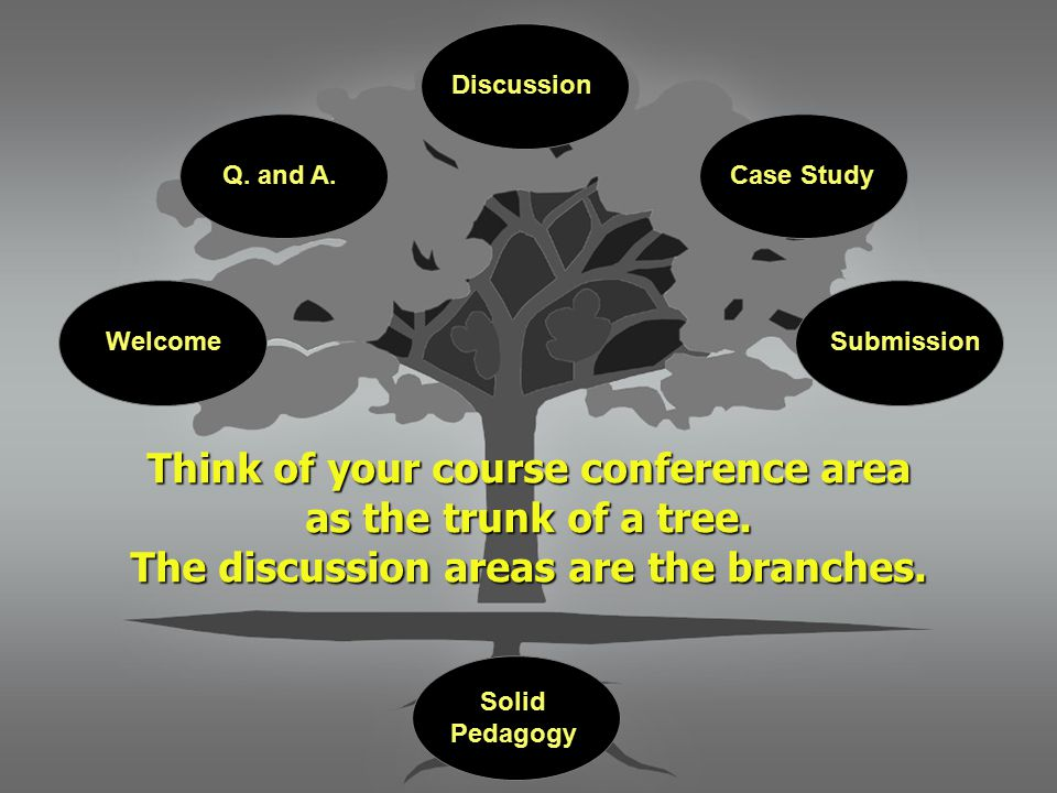 Think of your course conference area as the trunk of a tree.