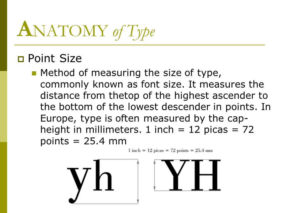 A NATOMY of Type  Point Size Method of measuring the size of type, commonly known as font size.