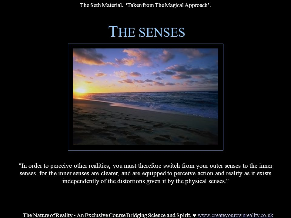 T HE SENSES In order to perceive other realities, you must therefore switch from your outer senses to the inner senses, for the inner senses are clearer, and are equipped to perceive action and reality as it exists independently of the distortions given it by the physical senses. The Nature of Reality - An Exclusive Course Bridging Science and Spirit.