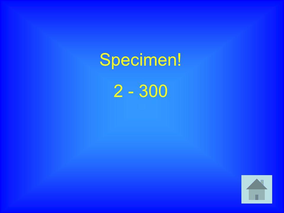Specimen! 2 - 300