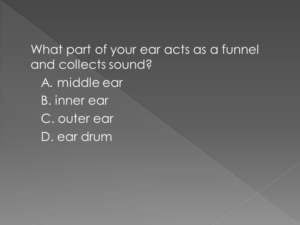 What part of your ear acts as a funnel and collects sound.