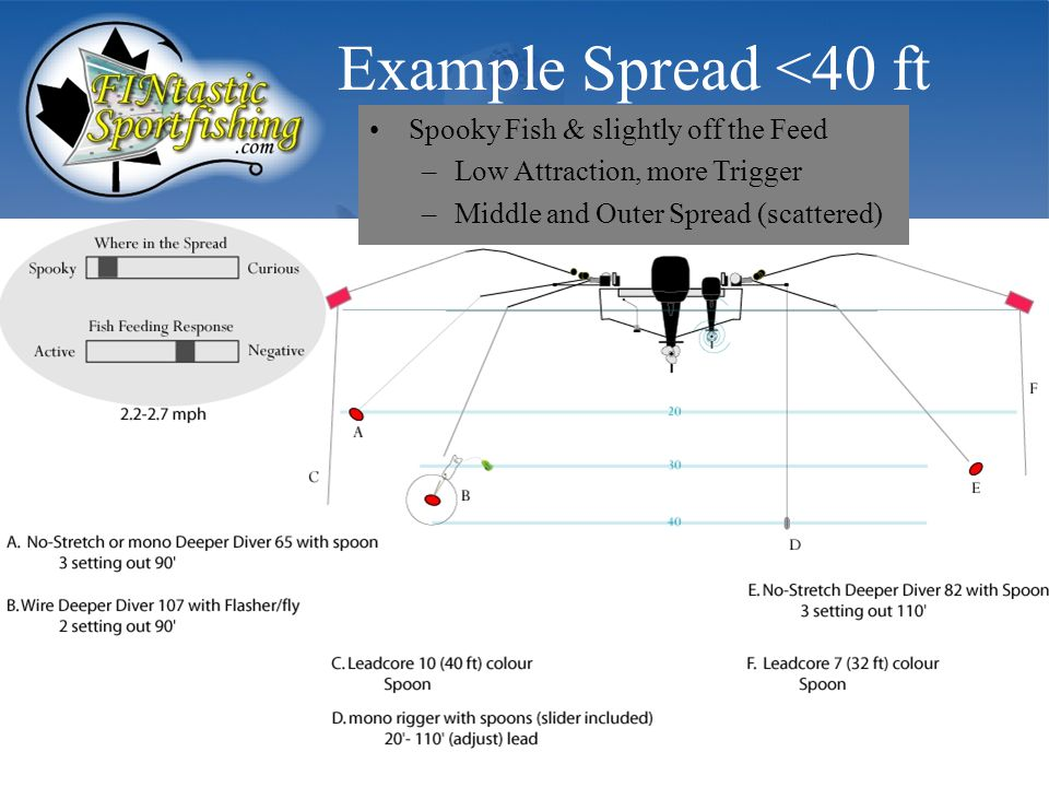 Example Spread <40 ft Spooky Fish & slightly off the Feed –Low Attraction, more Trigger –Middle and Outer Spread (scattered)
