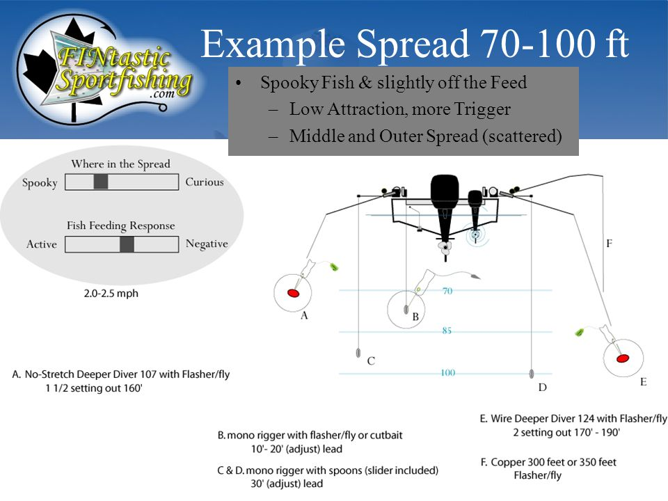 Example Spread 70-100 ft Spooky Fish & slightly off the Feed –Low Attraction, more Trigger –Middle and Outer Spread (scattered)