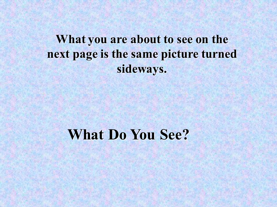 What Do You See What you are about to see on the next page is the same picture turned sideways.