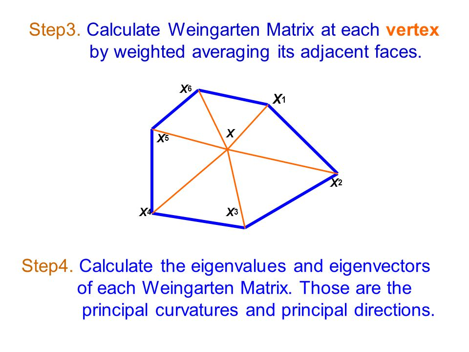 Step4. Calculate the eigenvalues and eigenvectors of each Weingarten Matrix.