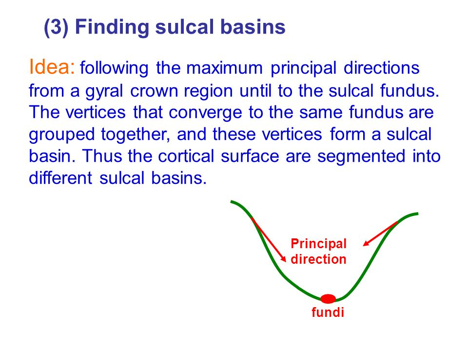 (3) Finding sulcal basins Idea: following the maximum principal directions from a gyral crown region until to the sulcal fundus.