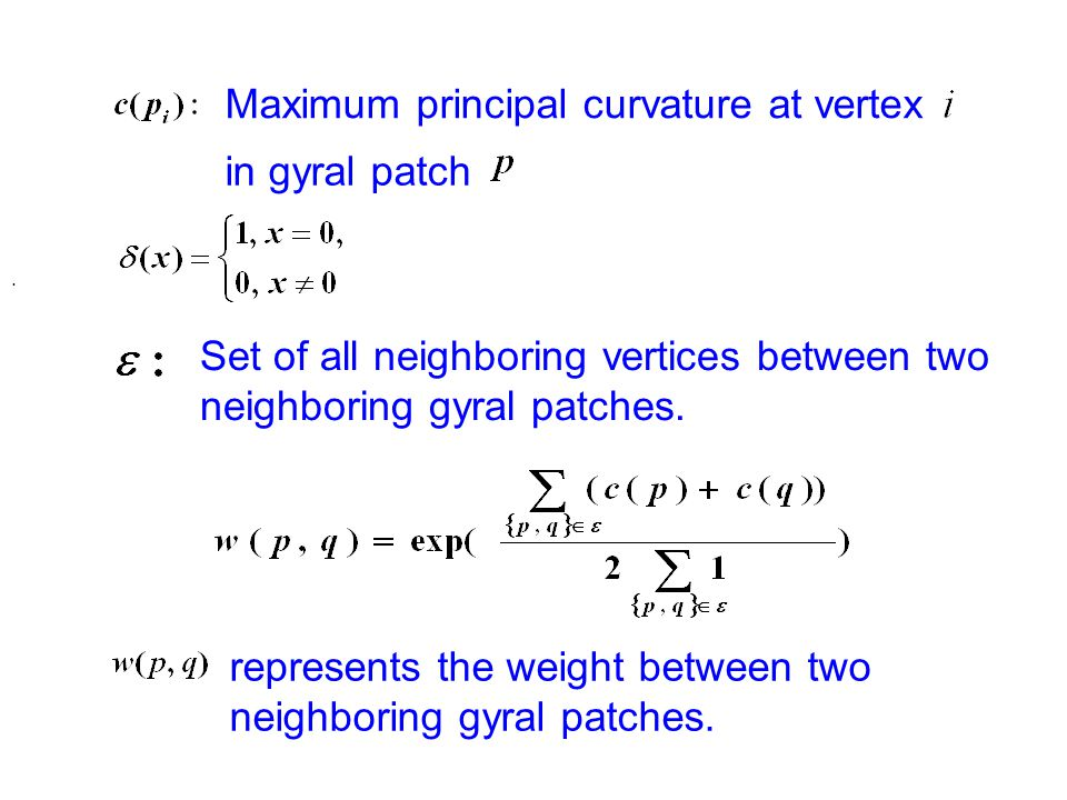 Maximum principal curvature at vertex in gyral patch.