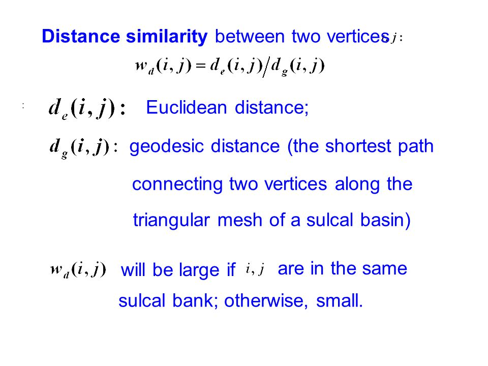Distance similarity between two vertices : Euclidean distance; geodesic distance (the shortest path will be large if sulcal bank; otherwise, small.