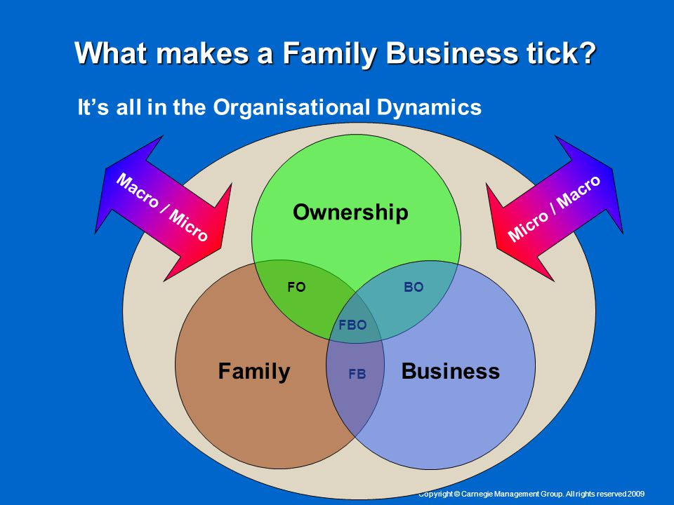 Copyright © Carnegie Management Group. All rights reserved 2009 What makes a Family Business tick.