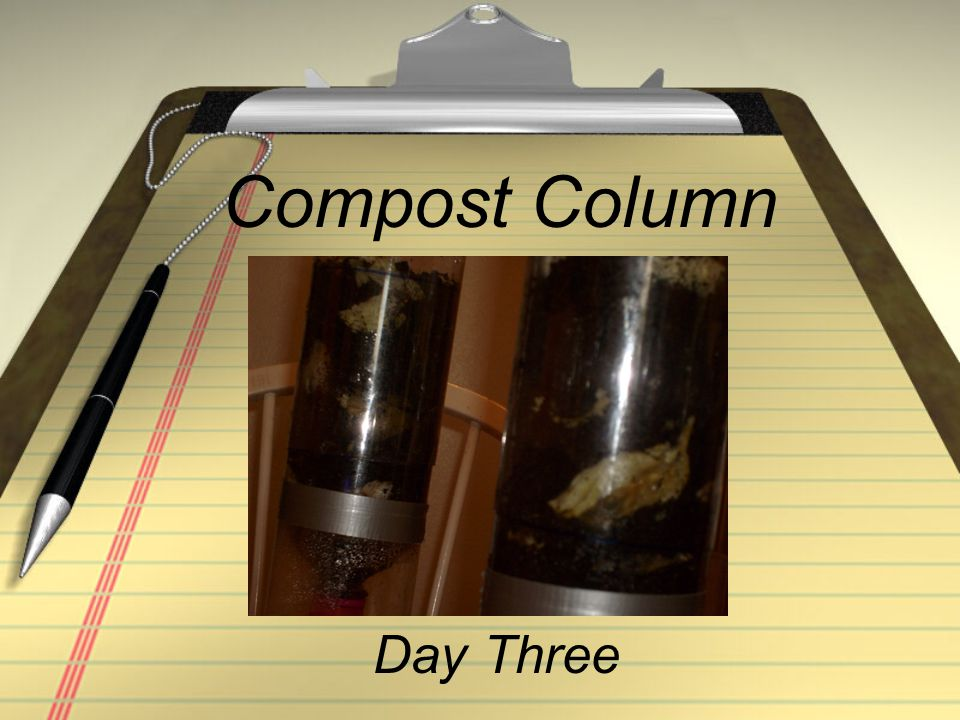 Compost Column Day Three