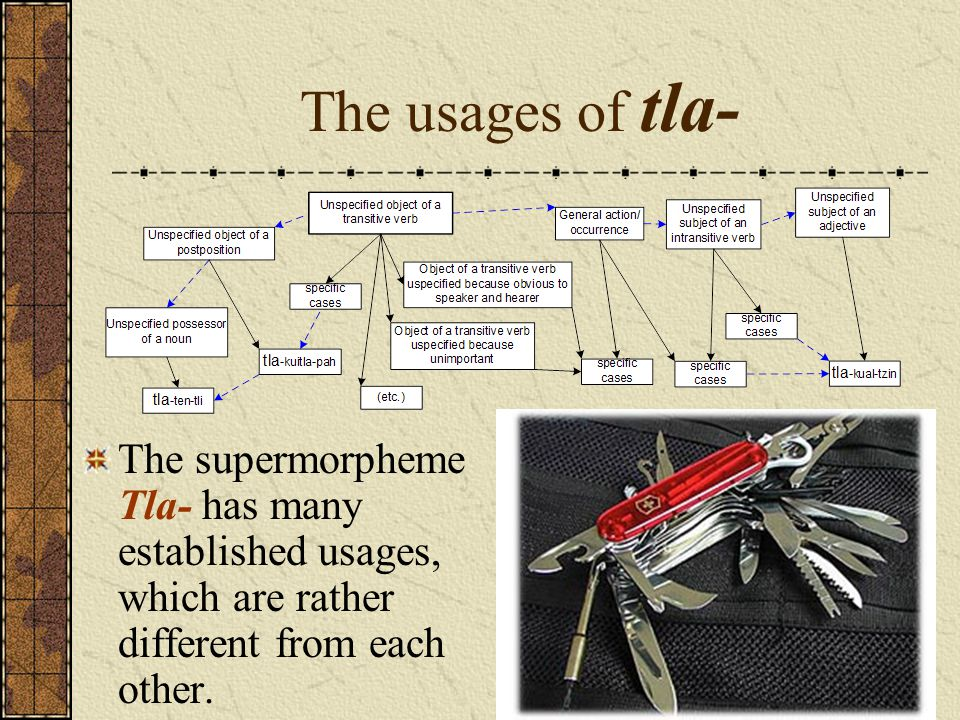 The usages of tla- The supermorpheme Tla- has many established usages, which are rather different from each other.