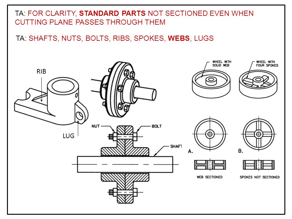 TA: FOR CLARITY, STANDARD PARTS NOT SECTIONED EVEN WHEN CUTTING PLANE PASSES THROUGH THEM TA: SHAFTS, NUTS, BOLTS, RIBS, SPOKES, WEBS, LUGS RIB LUG