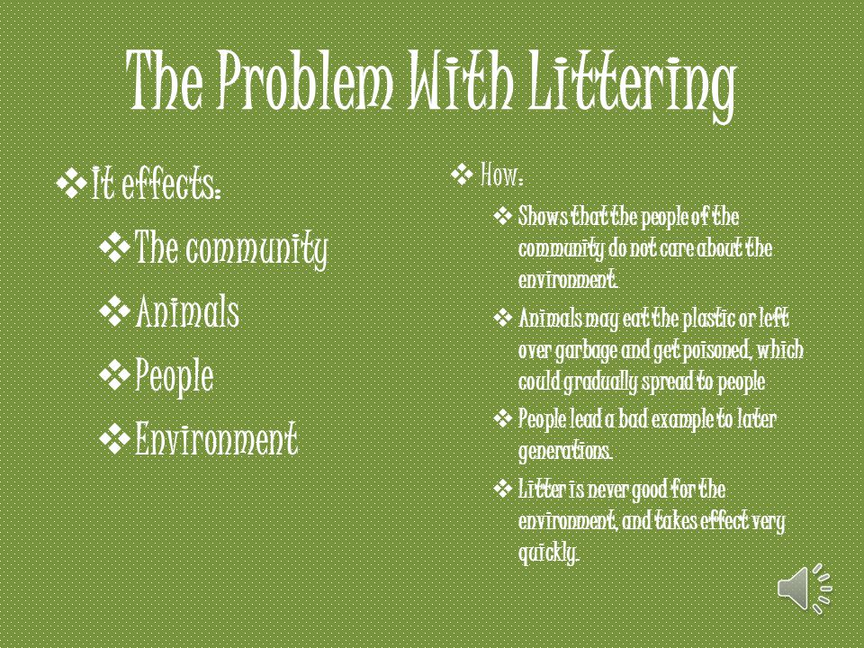 The Problem With Littering  It effects:  The community  Animals  People  Environment  How:  Shows that the people of the community do not care about the environment.