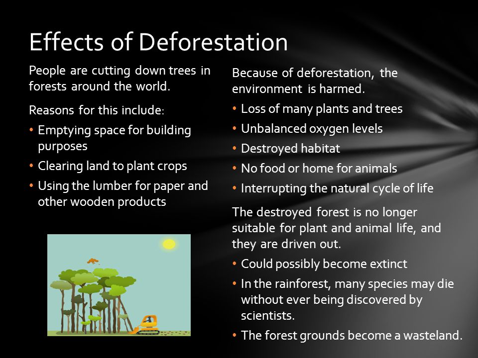 Because of deforestation, the environment is harmed.