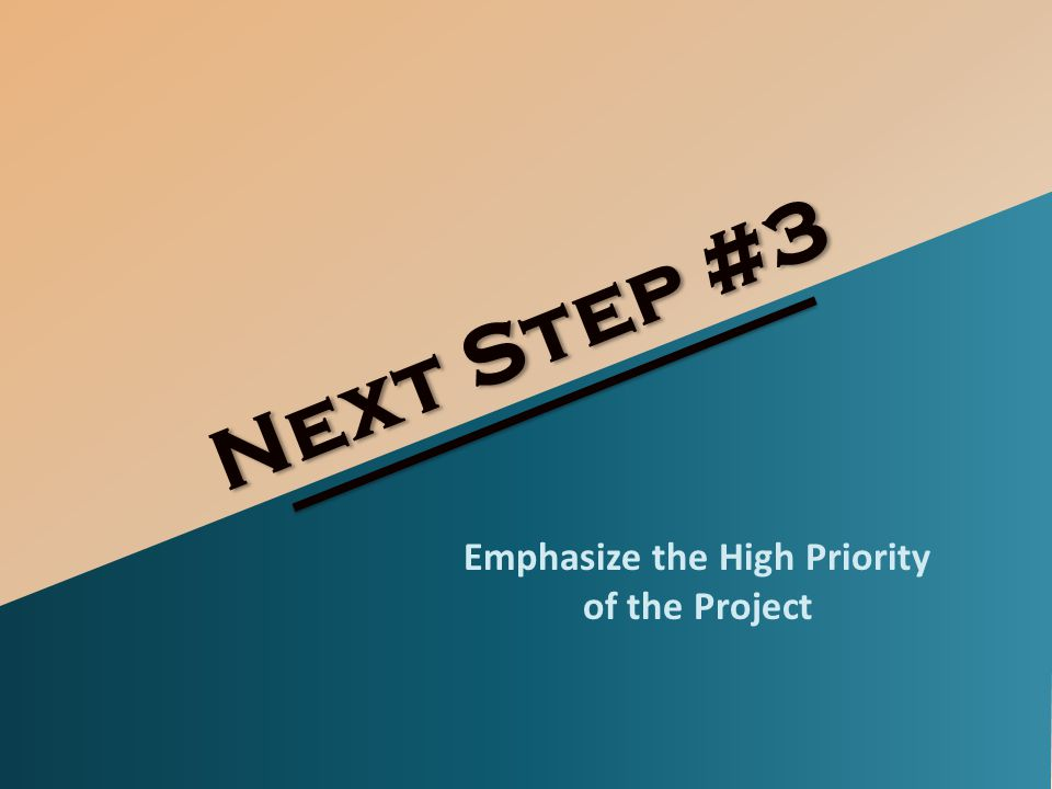Next Step #3 Emphasize the High Priority of the Project