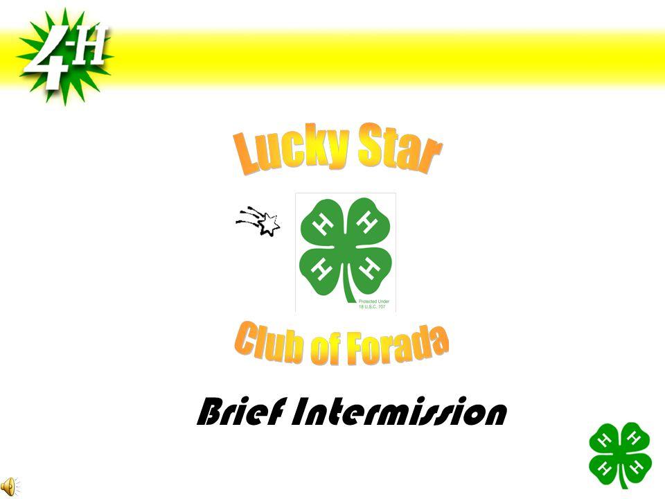 Brief Intermission