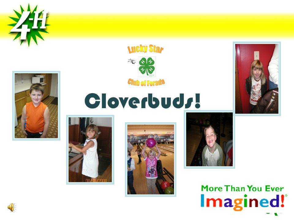 Cloverbuds!
