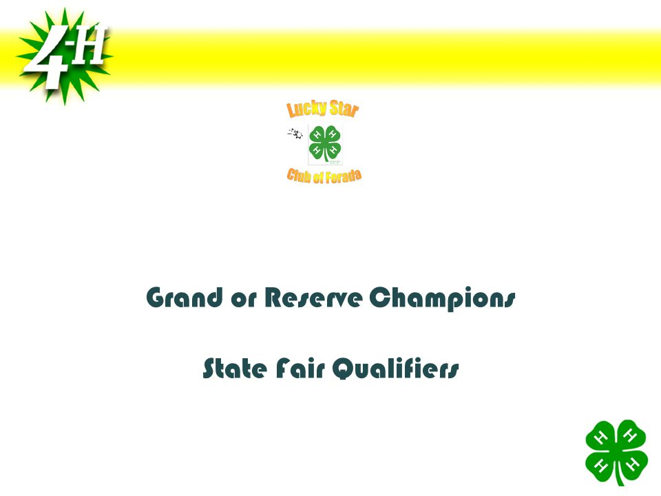 Grand or Reserve Champions State Fair Qualifiers