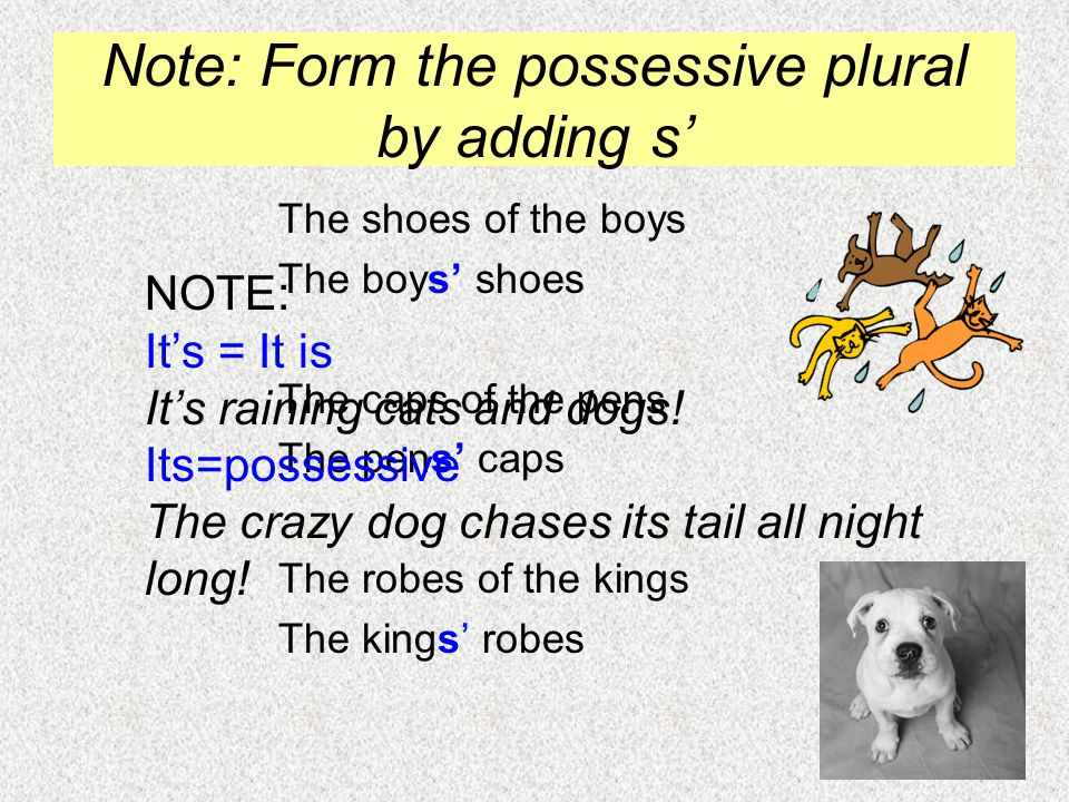 Note: Form the possessive plural by adding s' The shoes of the boys The boys' shoes The caps of the pens The pens' caps The robes of the kings The kin
