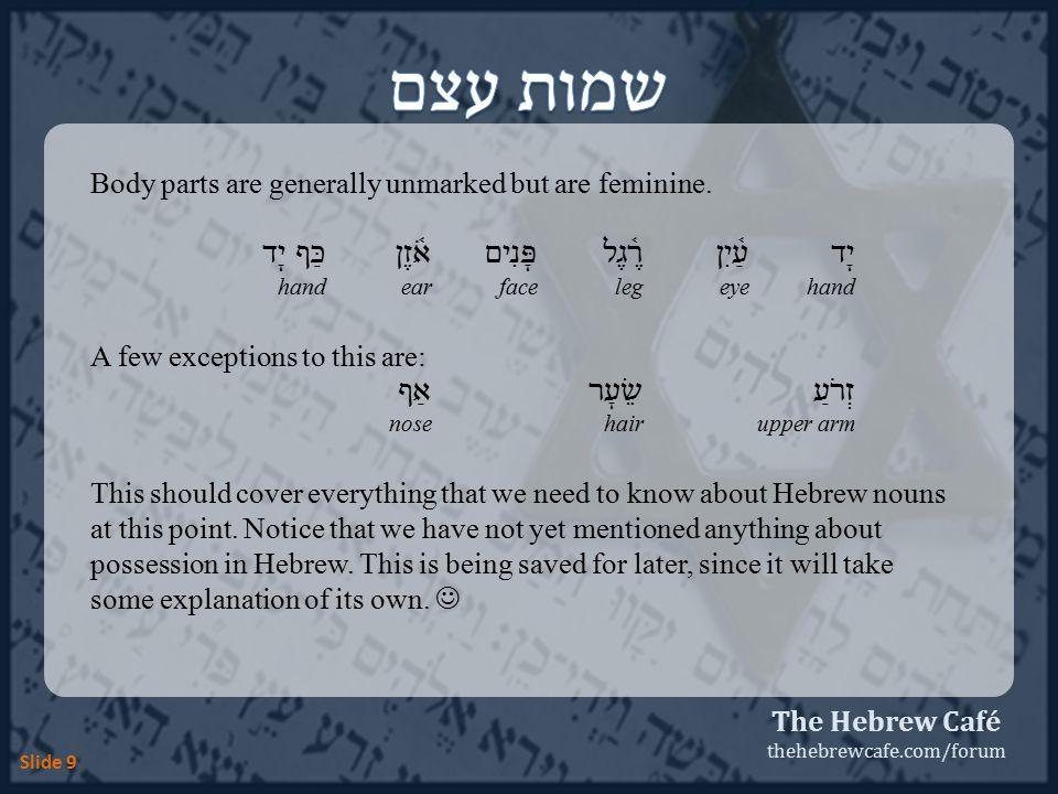 The Hebrew Café thehebrewcafe.com/forum Slide 10