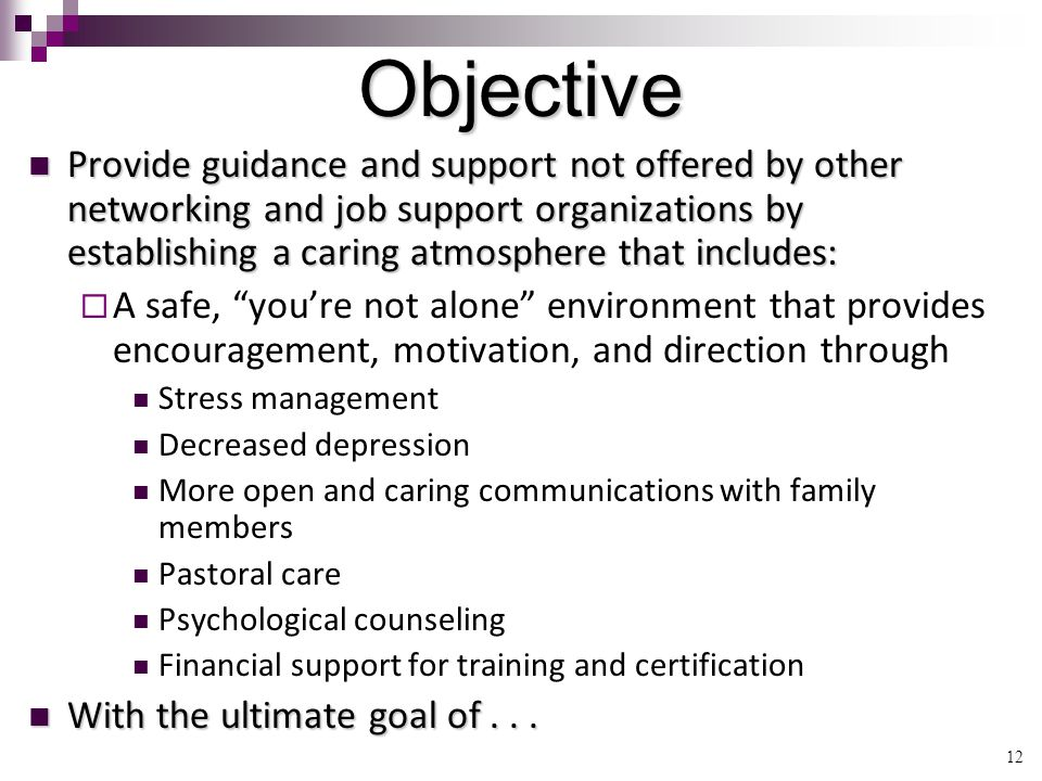 12 Objective Provide guidance and support not offered by other networking and job support organizations by establishing a caring atmosphere that includes: Provide guidance and support not offered by other networking and job support organizations by establishing a caring atmosphere that includes:  A safe, you're not alone environment that provides encouragement, motivation, and direction through Stress management Decreased depression More open and caring communications with family members Pastoral care Psychological counseling Financial support for training and certification With the ultimate goal of...