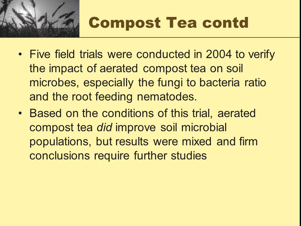 Compost Tea contd Five field trials were conducted in 2004 to verify the impact of aerated compost tea on soil microbes, especially the fungi to bacteria ratio and the root feeding nematodes.